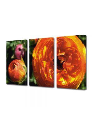 Set Tablouri Multicanvas 3 Piese Flori Flori speciale