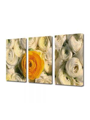 Set Tablouri Multicanvas 3 Piese Flori Floare portocalie printre flori albe