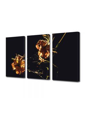 Set Tablouri Multicanvas 3 Piese Flori Pe seara