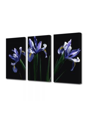 Set Tablouri Multicanvas 3 Piese Flori Flori mov