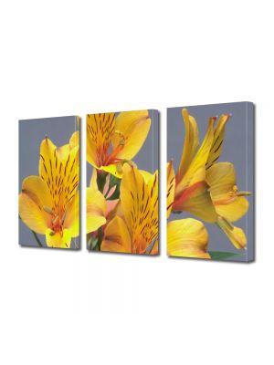 Set Tablouri Multicanvas 3 Piese Flori Prietenie