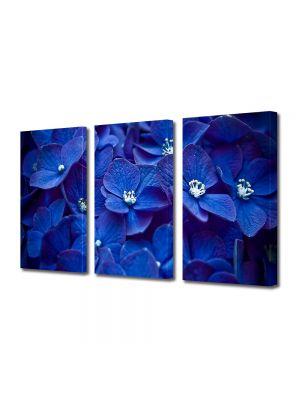 Set Tablouri Multicanvas 3 Piese Flori Flori albastre