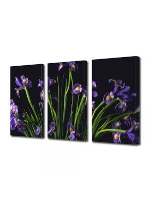Set Tablouri Multicanvas 3 Piese Flori Buchet
