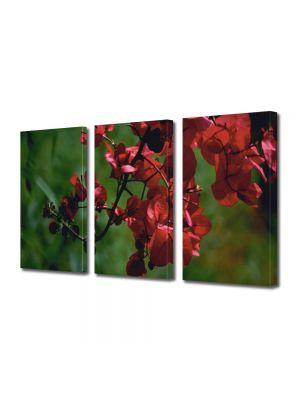 Set Tablouri Multicanvas 3 Piese Flori Crenguta