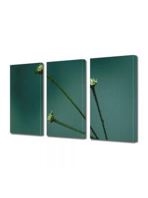 Set Tablouri Multicanvas 3 Piese Flori Trei fire