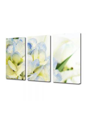 Set Tablouri Multicanvas 3 Piese Flori Lilieci albi