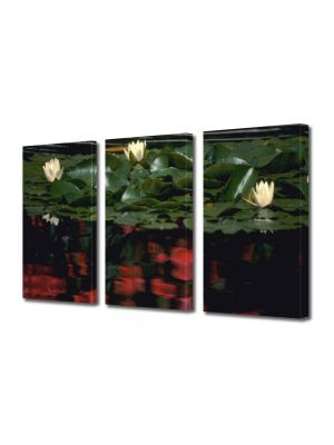 Set Tablouri Multicanvas 3 Piese Flori Nuferi albi