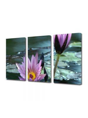 Set Tablouri Multicanvas 3 Piese Flori Flori violet de nuferi