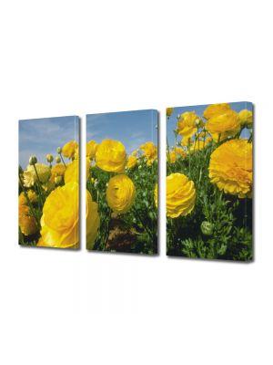 Set Tablouri Multicanvas 3 Piese Flori Flori galbene