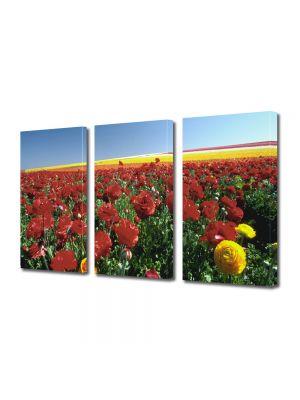 Set Tablouri Multicanvas 3 Piese Flori Camp colorat cu flori de vara