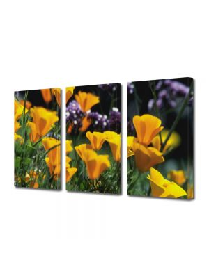 Set Tablouri Multicanvas 3 Piese Flori Flori blande
