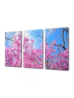 Set Tablouri Multicanvas 3 Piese Flori Ciresi infloriti