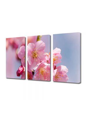 Set Tablouri Multicanvas 3 Piese Flori Miros superb