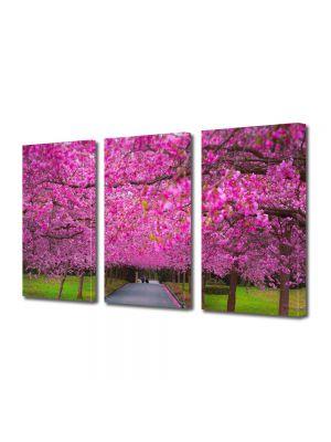 Set Tablouri Multicanvas 3 Piese Flori Gradina de ciresi japonezi