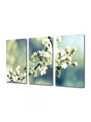 Set Tablouri Multicanvas 3 Piese Flori Crenguta de copacel