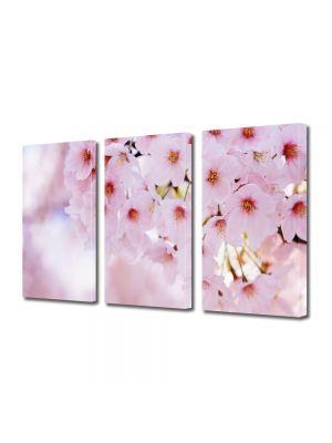 Set Tablouri Multicanvas 3 Piese Flori Crenguta parfumata