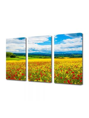 Set Tablouri Multicanvas 3 Piese Flori Camp multicolor