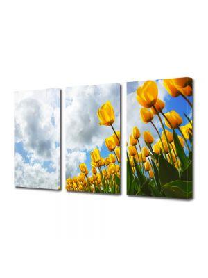 Set Tablouri Multicanvas 3 Piese Flori Lan de flori