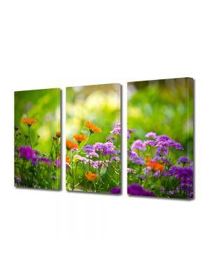 Set Tablouri Multicanvas 3 Piese Flori Flori si albinute