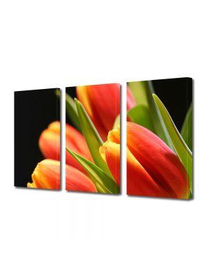 Set Tablouri Multicanvas 3 Piese Flori Muguri de lalea