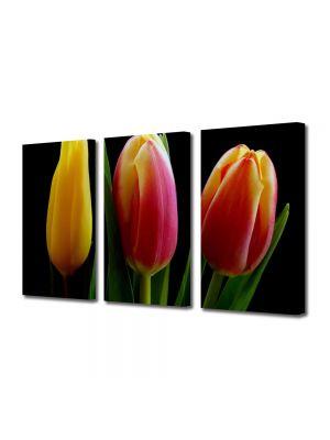 Set Tablouri Multicanvas 3 Piese Flori Trei lalele