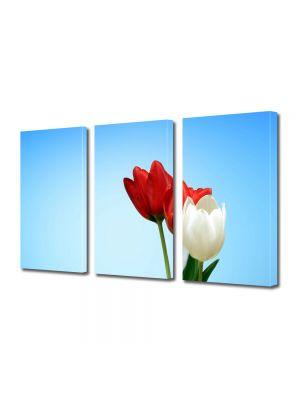 Set Tablouri Multicanvas 3 Piese Flori Lalele speciale