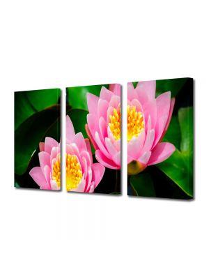 Set Tablouri Multicanvas 3 Piese Flori Lilieci de apa