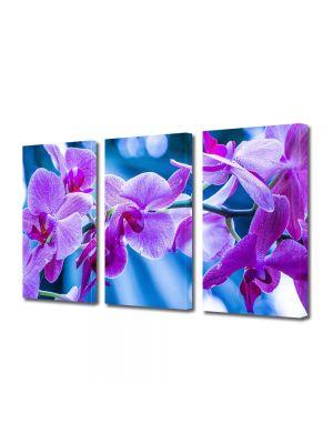 Set Tablouri Multicanvas 3 Piese Flori Violet
