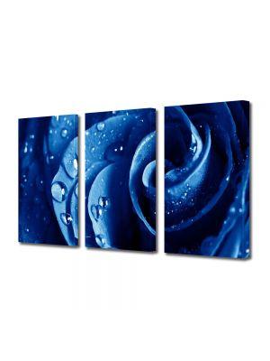 Set Tablouri Multicanvas 3 Piese Flori Trandafir albastru