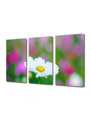 Set Tablouri Multicanvas 3 Piese Flori Alb imaculat