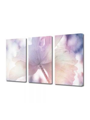 Set Tablouri Multicanvas 3 Piese Flori Zi de vara