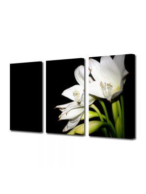 Set Tablouri Multicanvas 3 Piese Flori Liliac alb