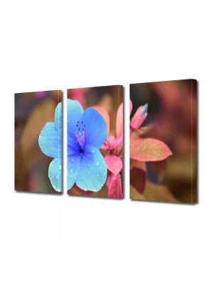 Set Tablouri Multicanvas 3 Piese Flori Trandafir chinezesc
