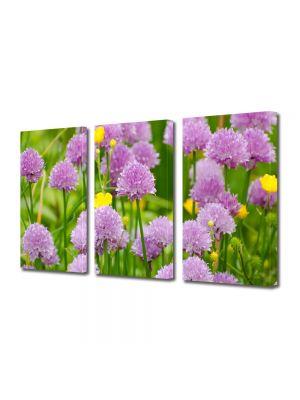 Set Tablouri Multicanvas 3 Piese Flori Flori violet salbatice