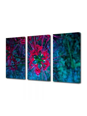 Set Tablouri Multicanvas 3 Piese Flori Flori subacvatice