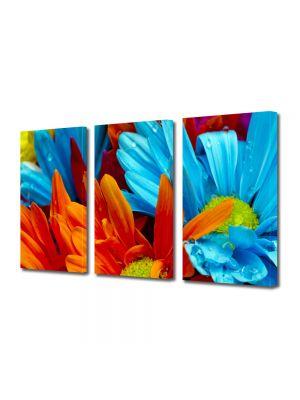 Set Tablouri Multicanvas 3 Piese Flori Flori cu colorit superb
