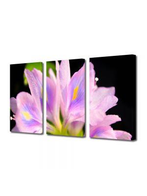 Set Tablouri Multicanvas 3 Piese Flori Petale Violet deschis