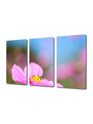Set Tablouri Multicanvas 3 Piese Flori Floare cu nuante violet