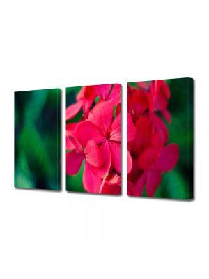 Set Tablouri Multicanvas 3 Piese Flori Floricica speciala