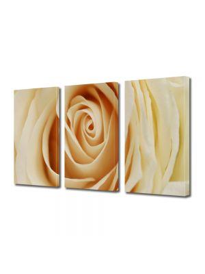 Set Tablouri Multicanvas 3 Piese Flori Inima delicata