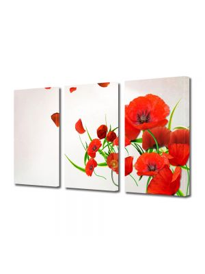 Set Tablouri Multicanvas 3 Piese Flori Maci in vant