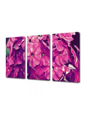 Set Tablouri Multicanvas 3 Piese Flori Fior violet