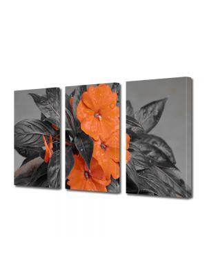 Set Tablouri Multicanvas 3 Piese Flori Flori cu nuante portocalii