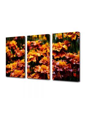 Set Tablouri Multicanvas 3 Piese Flori Flori de gradina