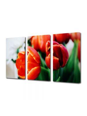 Set Tablouri Multicanvas 3 Piese Flori Portocaliu puternic