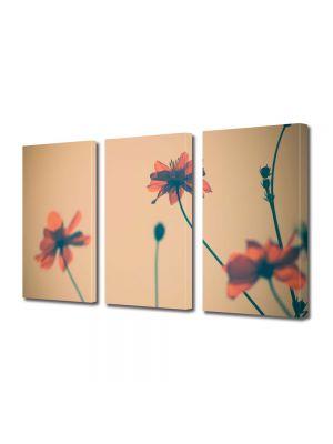Set Tablouri Multicanvas 3 Piese Flori Maci artistici