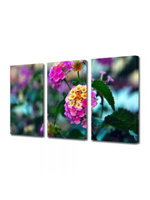 Set Tablouri Multicanvas 3 Piese Flori Flori in gradina