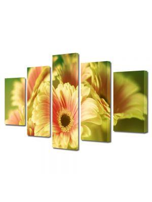 Set Tablouri Multicanvas 5 Piese Flori Buchet de gerbera