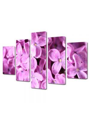 Set Tablouri Multicanvas 5 Piese Flori Liliac violet