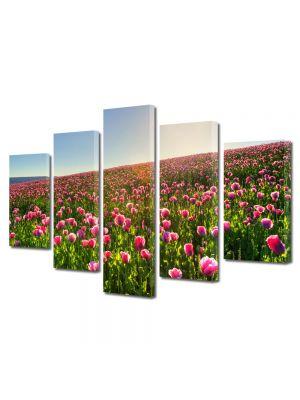Set Tablouri Multicanvas 5 Piese Flori Superb camp colorat cu flori